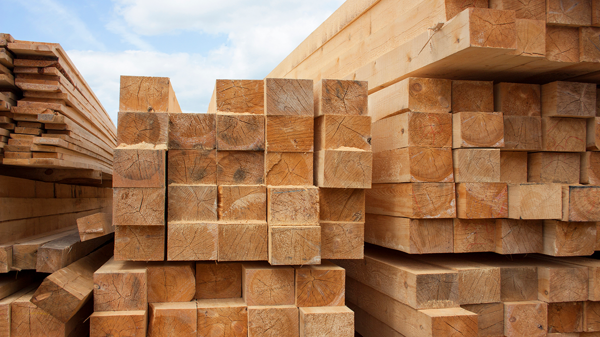 Lumber Prices Skyrocket 120% —The Effect on your Insurance Rates
